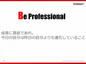 KINGSOFT Professional